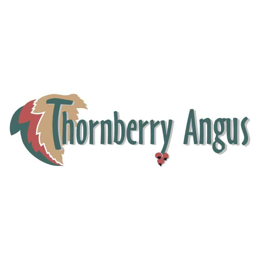 Logo_Design_Thornberry_Angus